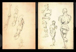 George Bridgman drawings from Norman Rockwell Museum collection.