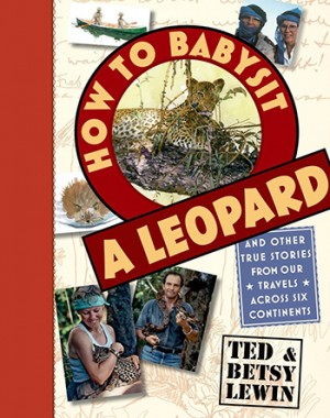 """How To Babysit a Leopard"" by Ted and Betsy Lewin, 2015. Roaring Brook Press."