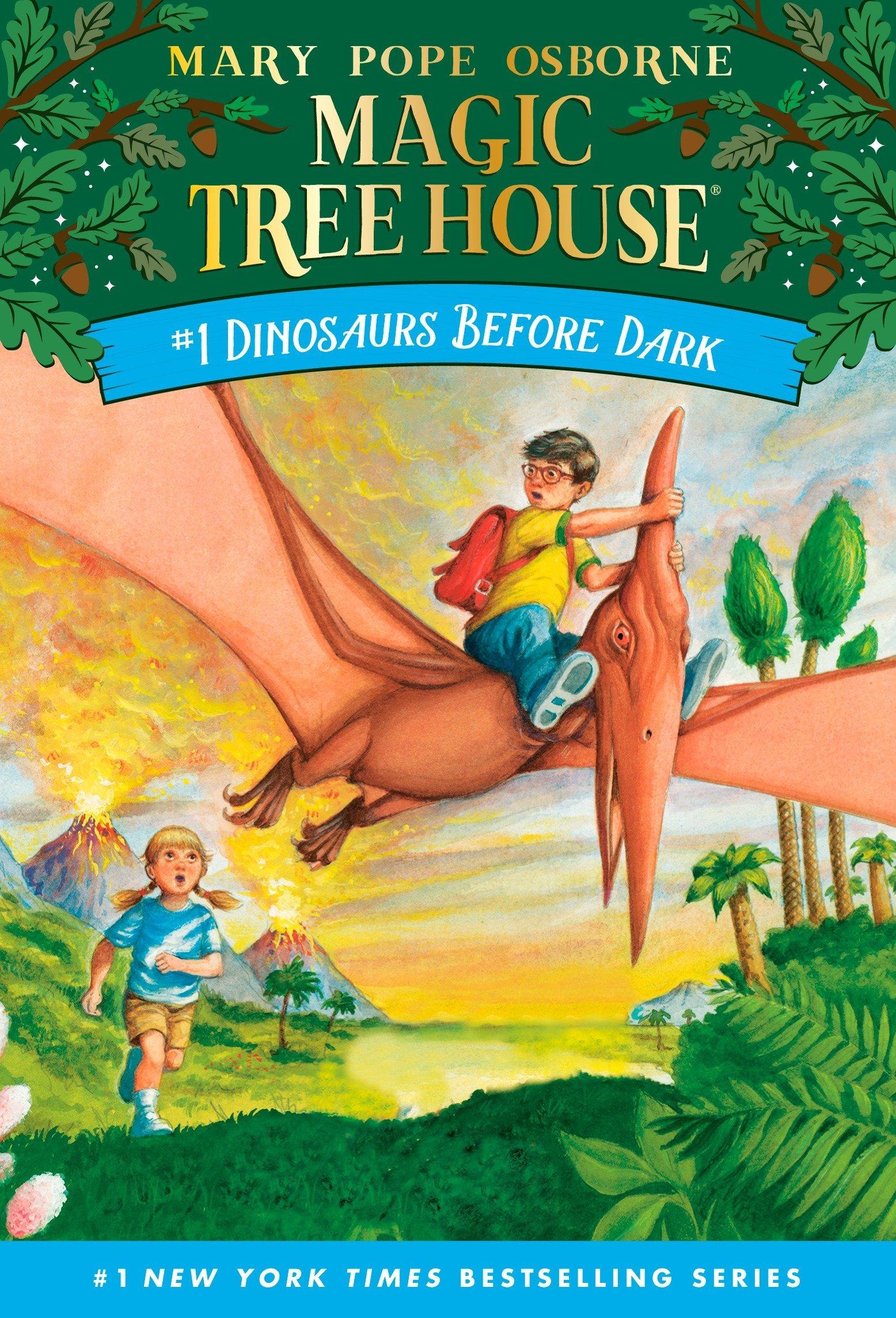 Magic Tree House book series by Mary Pope Osborne.